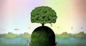 Come nutrire la mente